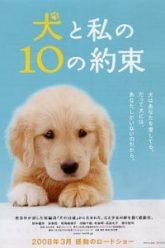 10-Promises-to-My-Dog-2008-10-ข้อสัญญาน้องหมาของฉัน-212×300-1