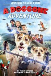 A-Doggone-Adventure