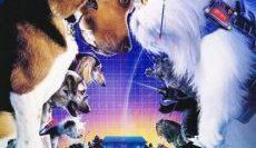 Cats-Dogs-1-สงครามพยัคฆ์ร้ายขนปุย-ภาค-1