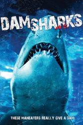 Dam-Sharks