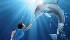 Dolphin-Tale-2011-มหัศจรรย์โลมาหัวใจนักสู้-e1539750408399