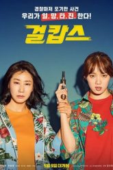 Miss-and-Mrs.-Cops-265×378-1