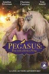 Pegasus-Pony-with-a-Broken-Wing