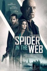 Spider-in-the-Web