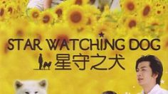 Star-Watching-Dog-266×378-1