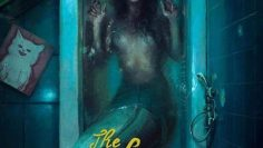 The-Lure