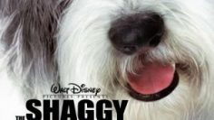 The-Shaggy-Dog-2006