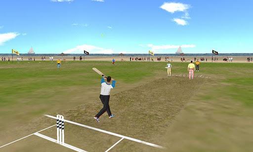 Beach Cricket v2.5.5 screenshots 2