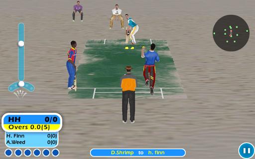 Beach Cricket v2.5.5 screenshots 5