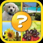 Download 4 Pics 1 Word Puzzle Plus 1.0.10 APK