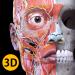 Download Anatomy 3D Atlas 3.0.0 APK