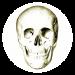 Download Anatomy Quiz 4.6.1 APK