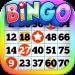 Download BINGO! 1.364 APK