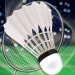 Download Badminton Star-New Sports Game 3.1 APK