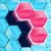 Download Block! Hexa Puzzle™ 21.0503.09 APK