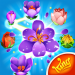 Download Blossom Blast Saga 100.10.0 APK