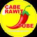 Download Cabe Rawit Tube VPN  APK