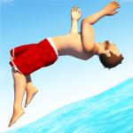 Download Flip Diving 3.3.5 APK