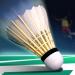 Download Real Badminton World Champion 2019 1.07 APK