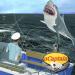 Download Ship Simulator & Boat Fishing Game ⛵ – uCaptain 5.13 APK
