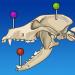 Download vet-Anatomy 2.0.0 APK