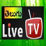 Free Download All Telugu live TV HD Channels 1.0 APK