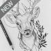 Free Download Art Drawing Ideas 1.5 APK