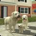 Free Download Dog Sim Online: Raise a Family 200 APK