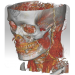 Free Download DroidRender – 3D DICOM viewer 3.9.3 APK