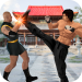 Free Download Kung fu fight karate offline games: Fighting games 3.54 APK