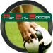 Free Download Psp Emulator Soccer 5000 APK