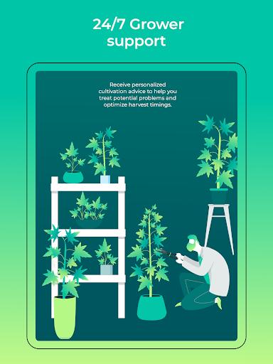 HiGrade THC Testing amp Cannabis Growing Assistant v1.0.320 screenshots 10
