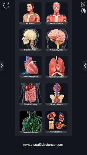 Human Anatomy v2.1 screenshots 1