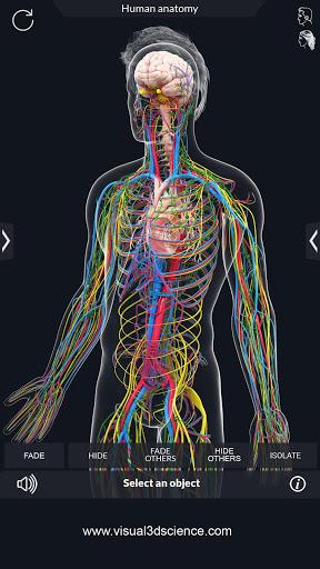 Human Anatomy v2.1 screenshots 6