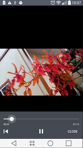 MP4 Video Cutter v6.6.0 screenshots 4