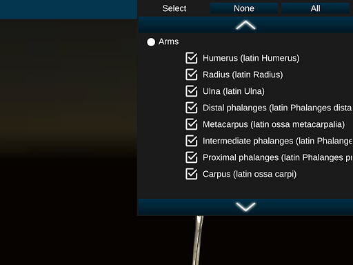 Osseous System in 3D Anatomy v2.0.3 screenshots 17