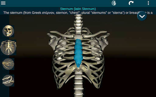 Osseous System in 3D Anatomy v2.0.3 screenshots 8