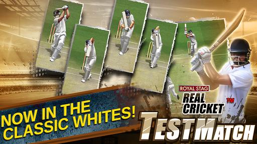 Real Cricket Test Match v1.0.7 screenshots 8