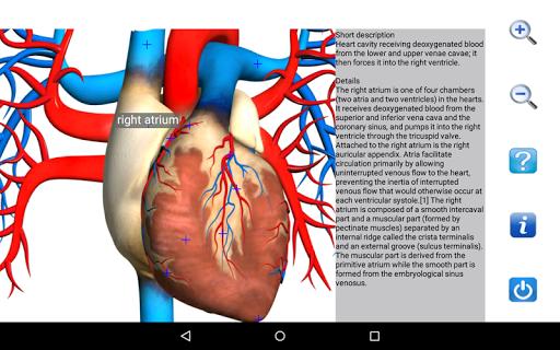 Visual Anatomy Free v0 screenshots 11