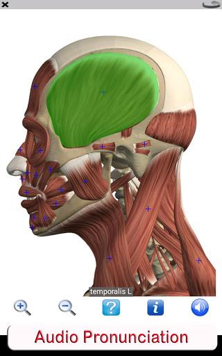 Visual Anatomy Free v0 screenshots 19
