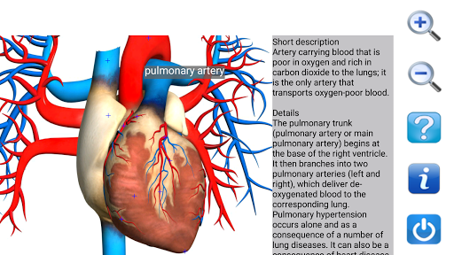 Visual Anatomy Free v0 screenshots 5