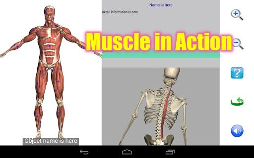 Visual Anatomy Free v0 screenshots 7