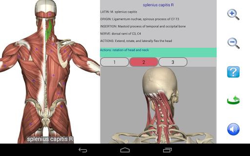 Visual Anatomy Free v0 screenshots 8