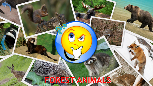 Animals for Kids Planet Earth Animal Sounds v8.3 screenshots 13