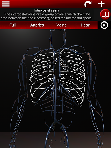 Circulatory System in 3D Anatomy v1.58 screenshots 11