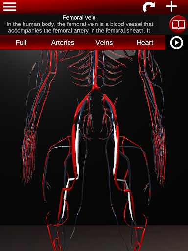 Circulatory System in 3D Anatomy v1.58 screenshots 12