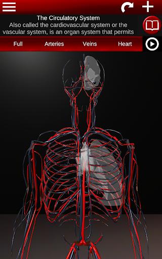 Circulatory System in 3D Anatomy v1.58 screenshots 15