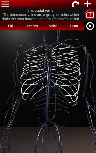 Circulatory System in 3D Anatomy v1.58 screenshots 17