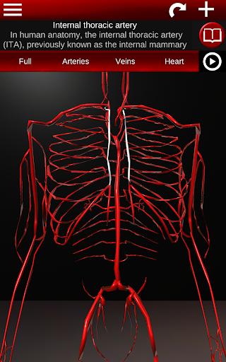 Circulatory System in 3D Anatomy v1.58 screenshots 18