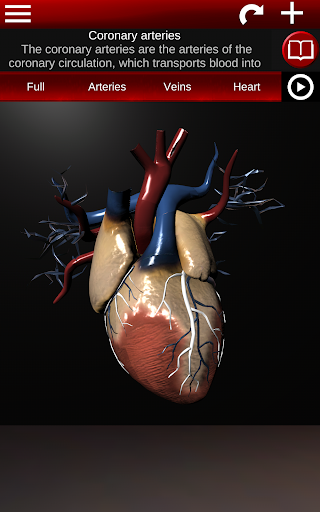 Circulatory System in 3D Anatomy v1.58 screenshots 19